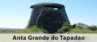 Anta Grande do Tapadao